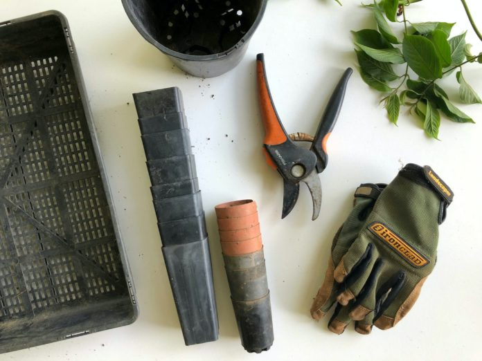 landscaping-business-skills